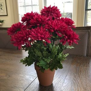 Artificial Potted Mums in Deep Magenta.
